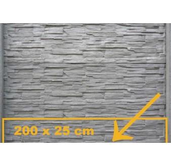 https://www.hezke-ploty.cz/293-594-thickbox/betonova-deska-11-mala-pro-oboustranny-plot.jpg